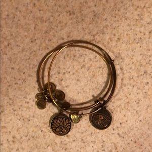 Alex and ani two bracelets